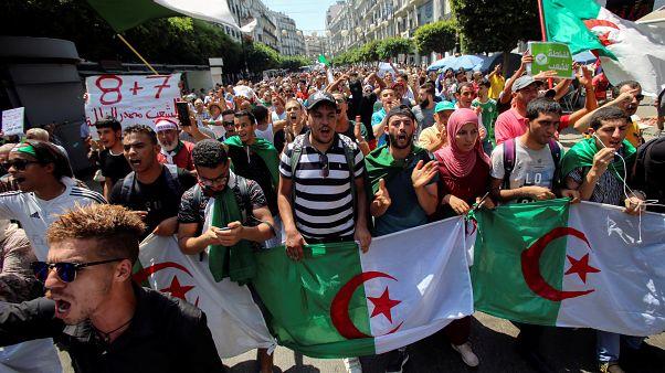 قائد أركان الجيش الجزائري يحدد إعلان موعد الانتخابات القادمة في 15 أيلول/سبتمبر