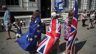 مؤيدون للبقاء في داخل الاتحاد الأوروبي أمام مقر مجلس الوزراء في لندن