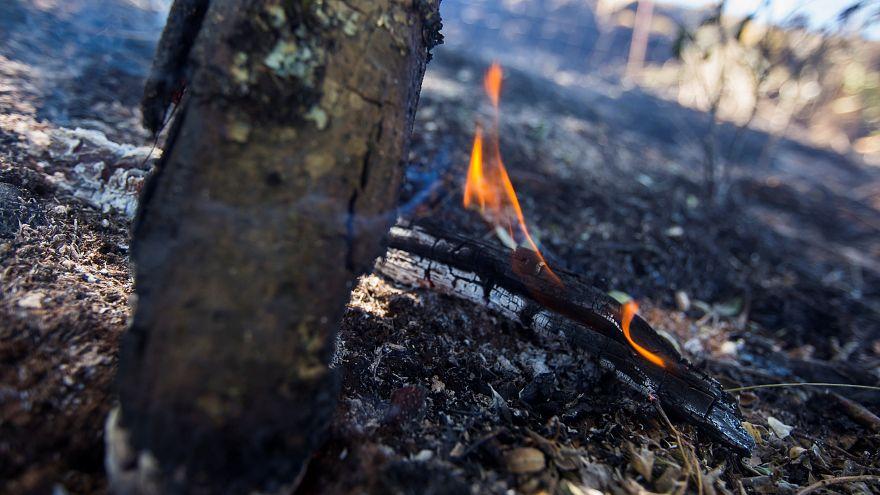 Remite el fuego en Gran Canaria