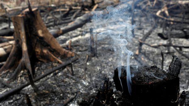 21 août 2019, brûlis à Novo Airao, au Brésil