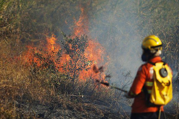 Incendi foresta amazzonica, Bolsonaro invia l'esercito