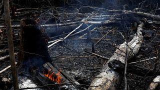 Μπολσονάρου κατά ΜΚΟ για τις φωτιές στον Αμαζόνιο