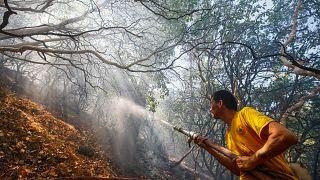Tunç Soyer'den orman yangınları sonrası İzmirlilere buluşma çağrısı