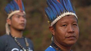 Incendies en Amazonie : l'inquiétude est mondiale