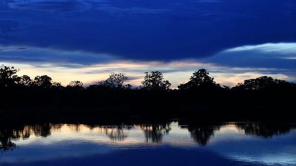 L'Amazonie essentielle ! Sans elle, la Terre ne respirera plus