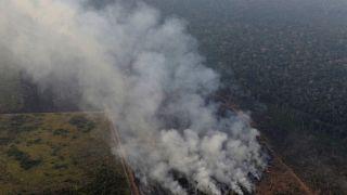A Amazónia arde, o mundo assiste e os políticos pedem urgência