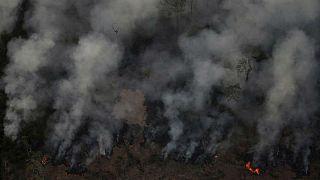 آمازون در آتش؛ دعوای رهبران برزیل و فرانسه