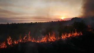 L'impact à grande échelle des feux en Amazonie