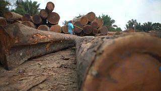 El acuerdo con Mercosur, el as de la UE contra el fuego en Brasil