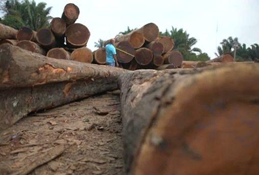 Crise na Amazónia pode pôr em risco acordo UE-Mercosul