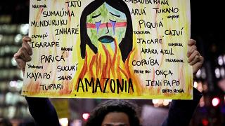 Il fuoco dell'Amazzonia incendia le piazze