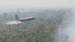 Brasilien: Armee gegen Amazonas-Waldbrände