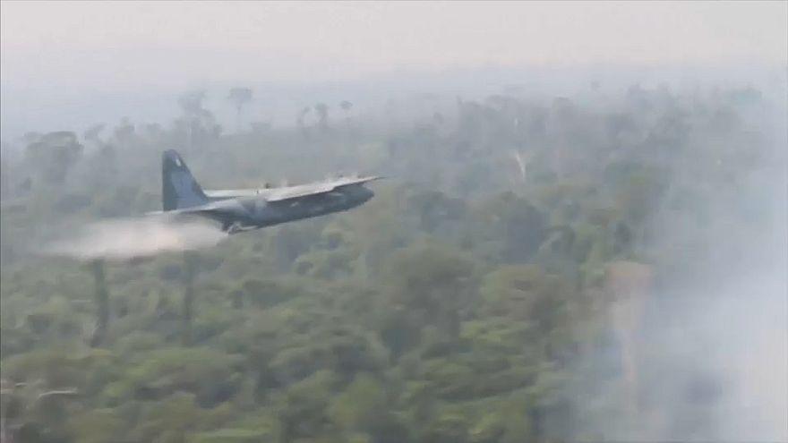 Amazonie : sept États brésiliens appellent l'armée pour lutter contre les feux