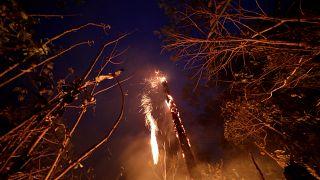 Amazon yangınları Peru, Bolivya ve Paraguay'a sıçradı; Brezilya yardım istedi