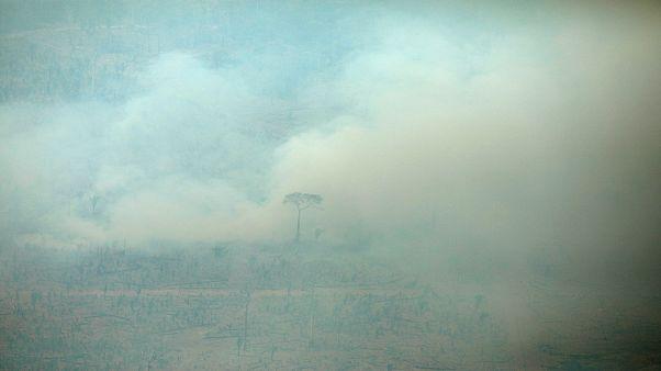 صورة التقطت من الجو لحريق في غابات الأمازون