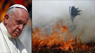 Sumo Pontífice apela à união internacional na proteção dos pulmões florestais