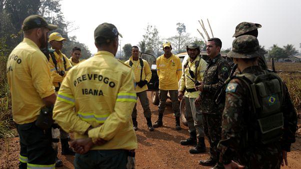 Így mentik a brazil katonák az esőerdő állatait az erdőtűzből