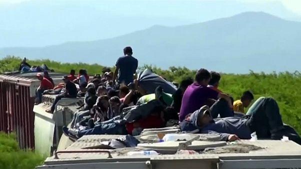 """Migrantes víctimas de """"la bestia"""", el tren que atraviesa México de sur a norte"""
