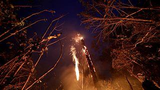 آتشسوزی جنگل های آمازون