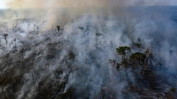 An aerial view of forest fire of the Amazon taken with a drone is seen from an Indigenous territory in the state of Mato Grosso, in Brazil, August 23, 2019