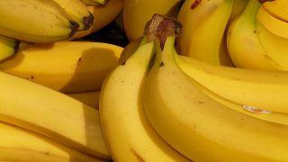 Drogenfahnder finden in Hamburg 100 Kilo Kokain in Bananen-Container