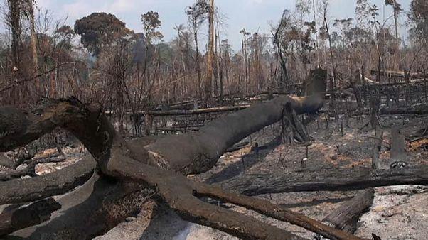 Brazília: nem érzékelhető még a hatalmas katonai akció a tüzek ellen