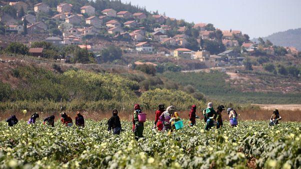 فيديو: أهالي جنوب لبنان يعلنون التحدي ضد إسرائيل