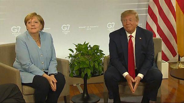 """Trump nimmt Merkels Einladung an: """"Habe deutsches Blut"""""""