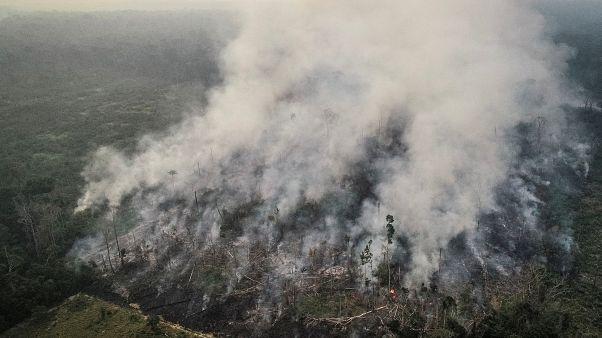 Kanada Brezilya'ya Amazonlar için 15 milyon dolar ve yangın söndürme uçakları gönderecek