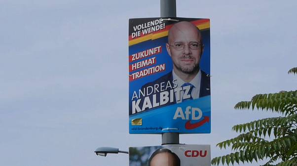 Landtagswahl in Brandenburg: AfD auf dem Vormarsch