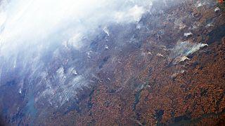 Amazonlarda her dakika bir buçuk futbol sahası büyüklüğünde orman yok oluyor
