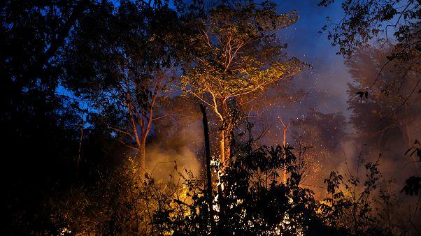 Amazonlar için G7 yardımını reddeden Brezilya, İsrail'in yardım teklifini kabul etti