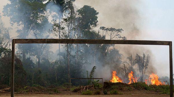 موافقت مشروط برزیل با کمک ۲۰ میلیون دلاری گروه ۷ برای نجات آمازون