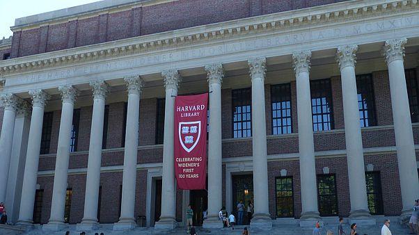 جامعة هارفرد الأمريكية