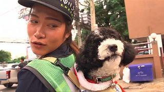 Egy utcaseprő a hátán hordozza kutyáját