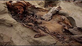 إضافة إلى الحيوانات البحرية اليافعة، من حيتان وسمك تونا وغيرها، كانت حضارة موتشي تقدم أطفالاً ذبائح لإله البحر