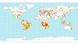 Nem lehet összehasonlítani az amazonasi és az afrikai erdőtüzeket