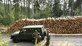 آلية تابعة للجيش الألماني في غابة من منطقة ساكسونيا الواقعة شرق ألمانيا