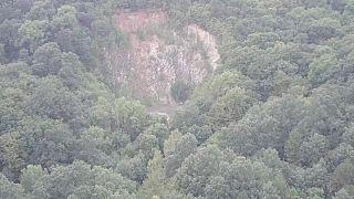 Bosques amenazados también en Europa