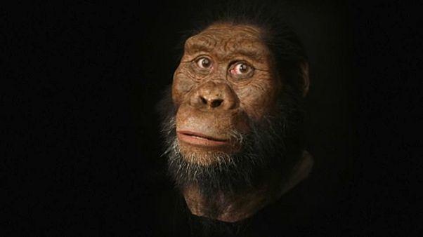 Australopithecus anamensis: Αυτός είναι ο πρόγονος του ανθρώπου