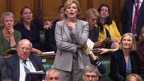 İngiltere'de parlamentonun askıya alınmasına karşı çıkanların sayısı 1 milyonu aştı
