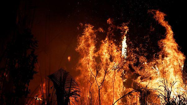 Hatvan napos tűzgyújtási tilalmat rendelt el Bolsonaro