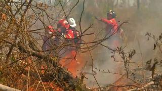 Waldbrände in Bolivien fast gelöscht