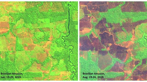 Data Source: Sentinel Satellite/@aghakouchak