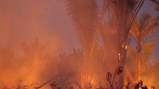 Bolsonaro muda decreto e restringe proibição de queimadas à Amazónia