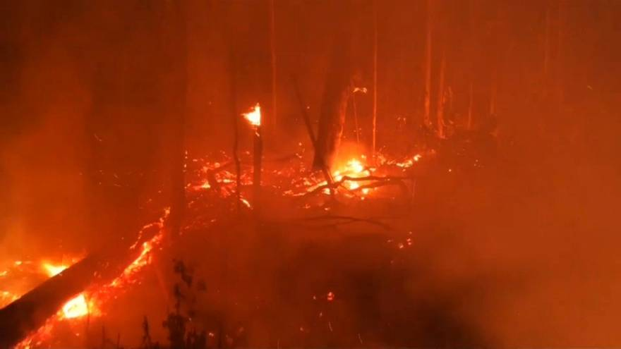 شبهای سرخ آمازون از آتشسوزی مستمر