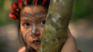 Amazónia őslakosai küzdenek az erdőtüzek és a fakitermelők ellen