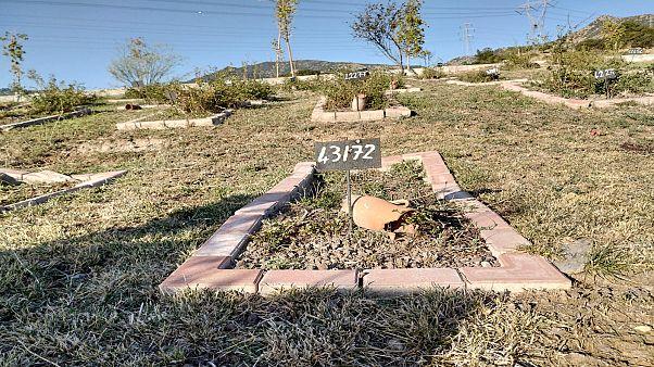 İzmir'de sahipsiz Aylan bebeklerin mezarlığı: 412 numaralı ada