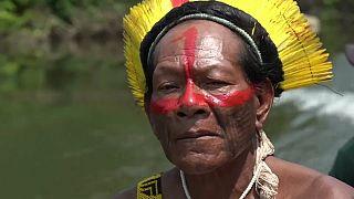 Amazonie : le chef d'une tribu s'engage contre la destruction de la forêt