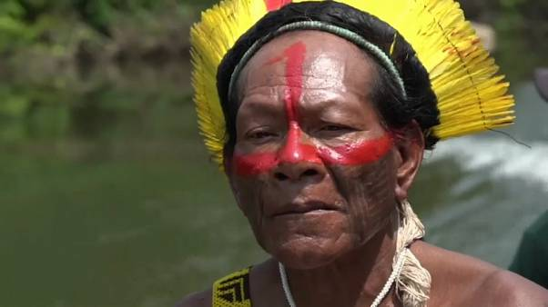 Amazonie : le chef d'une tribu s'engage contre la destruction de la forêt
